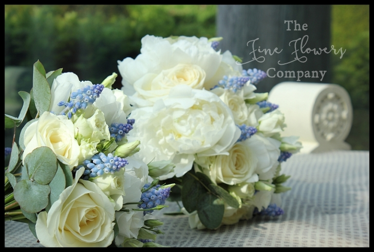 handtied bridal bouquet of ivory white roses, paeonies, blue muscari and silvery eucalyptus.