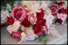 red and blush roses and proteas mini proteas bridal bouquet